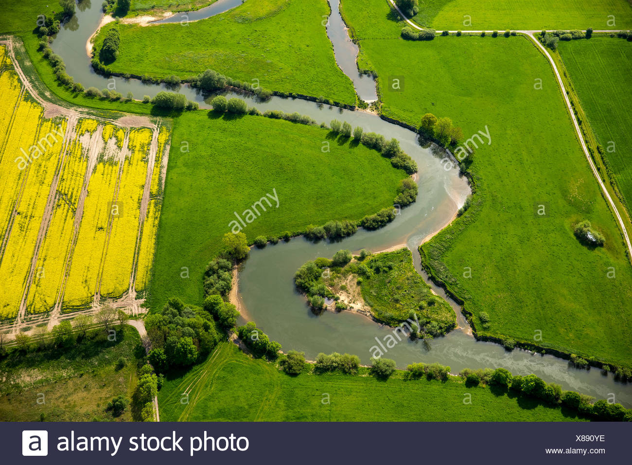 Renaturation, meander of the river Lippe, LIFE+ Project Lippeaue, Hamm, Ruhr district, North Rhine-Westphalia, Germany - Stock Image