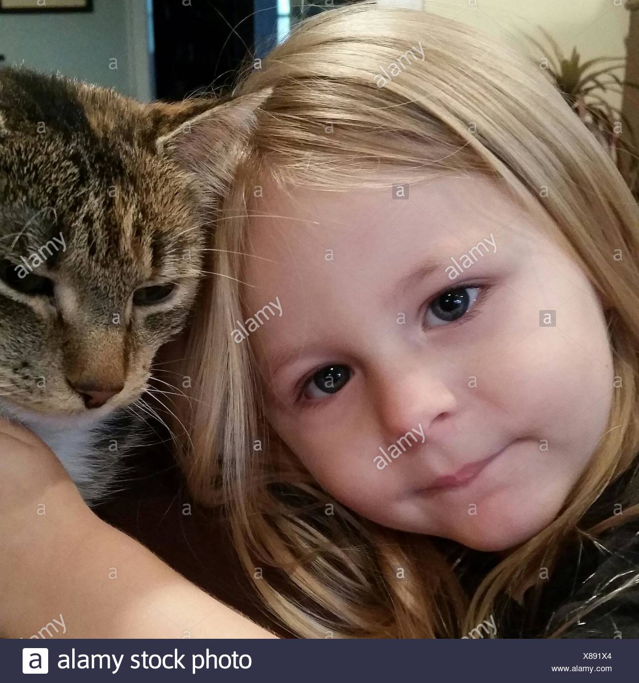 Close-Up Portrait Of Cute Girl With Cat At Home Stock Photo