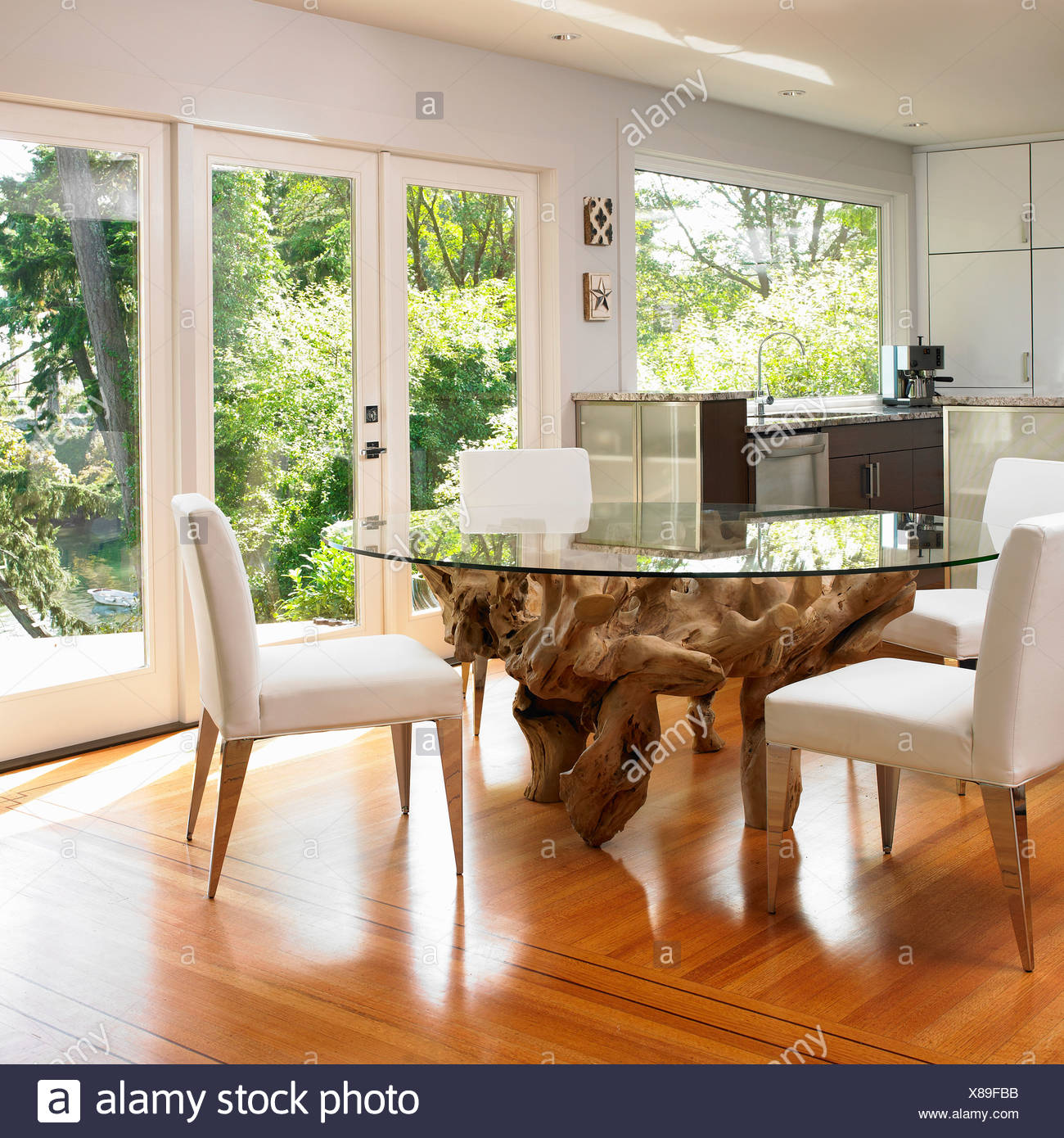Glass-Topped Dining Table With Large Tree Root Base; Victoria Vancouver Island British Columbia Canada Stock Photo