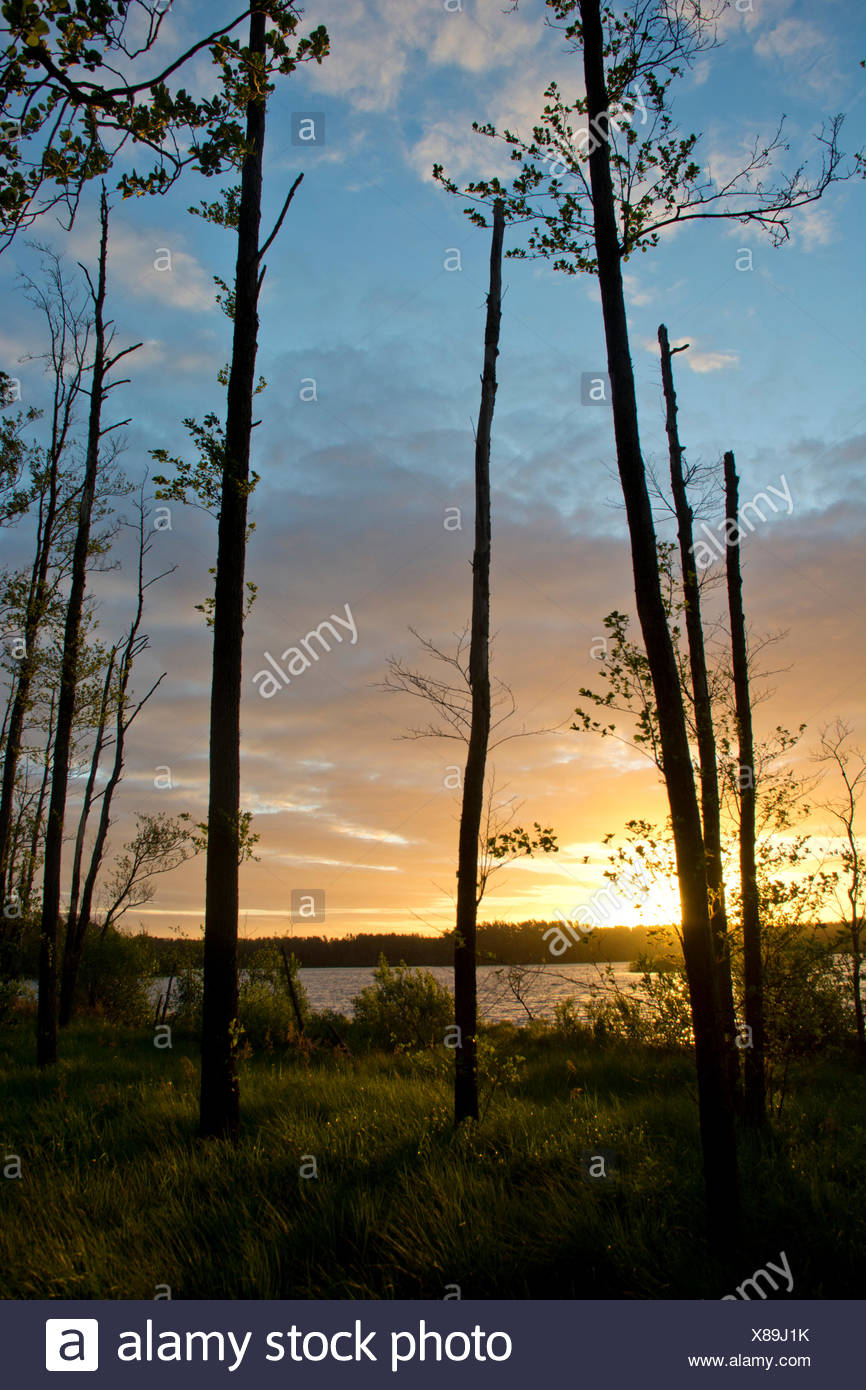 sunset over a lake in Skane - Stock Image