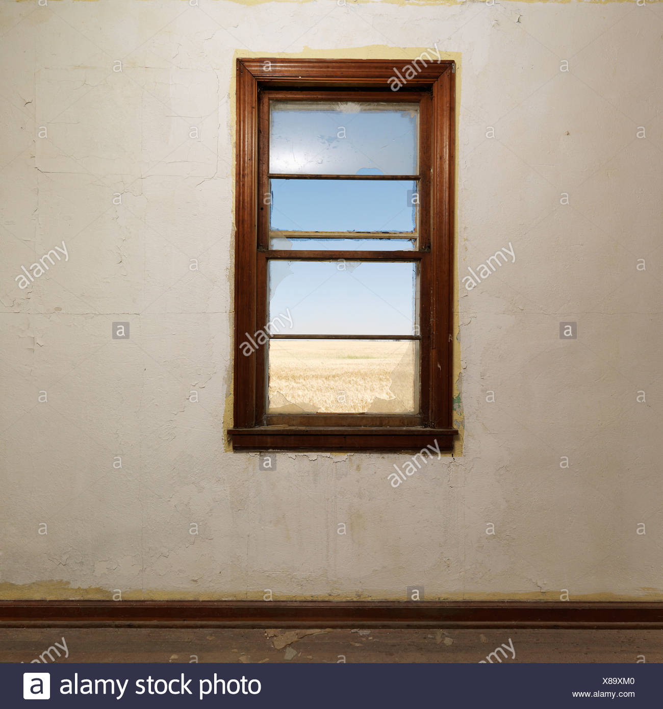 Empty abandoned room with widow centered on wall - Stock Image