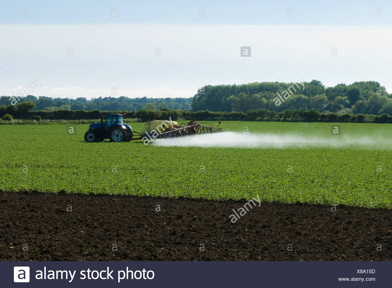 Tractor and crop sprayer spraying in field - Stock Image