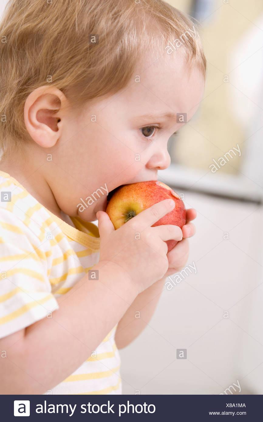 Baby girl (2-3) eating an apple - Stock Image