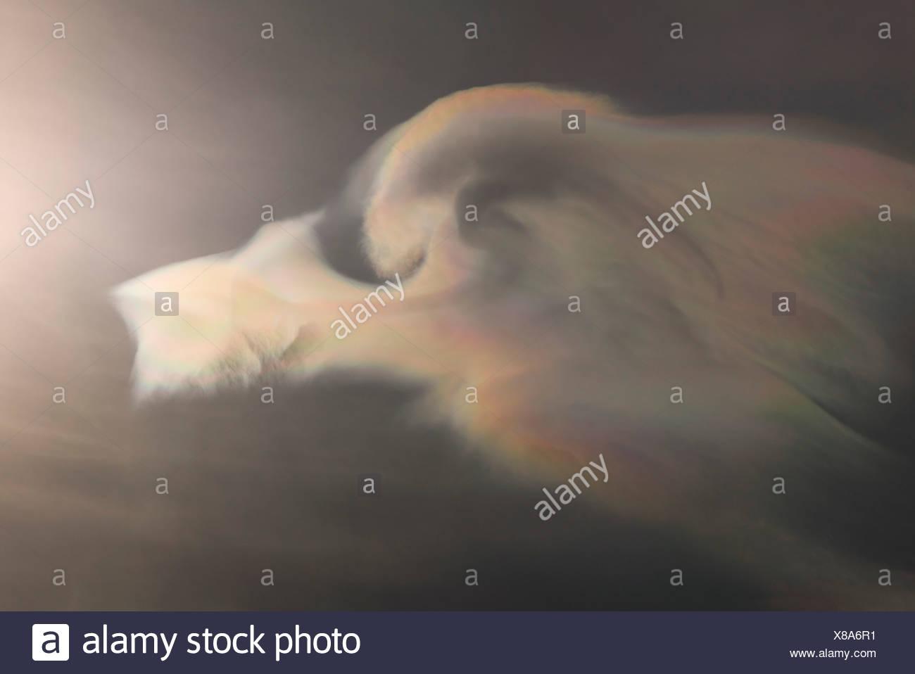 Backlit cloud showing interference lighting phenomenon - Stock Image