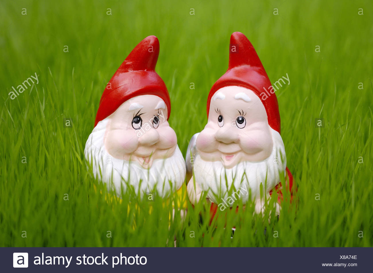 Garden gnomes, Stock Photo