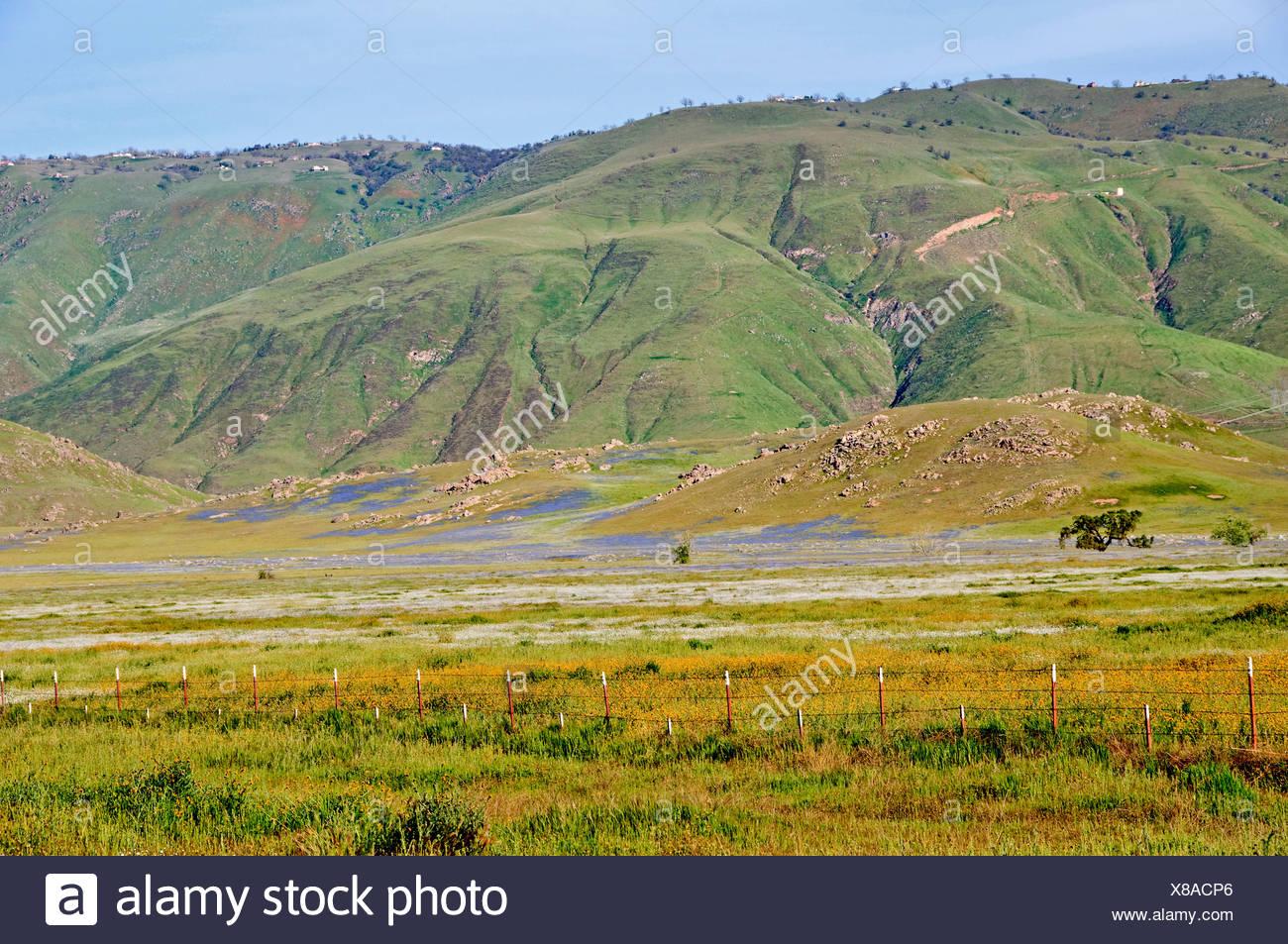 Landscape On Tejon Ranch; Grapevine, California, United States Of America - Stock Image