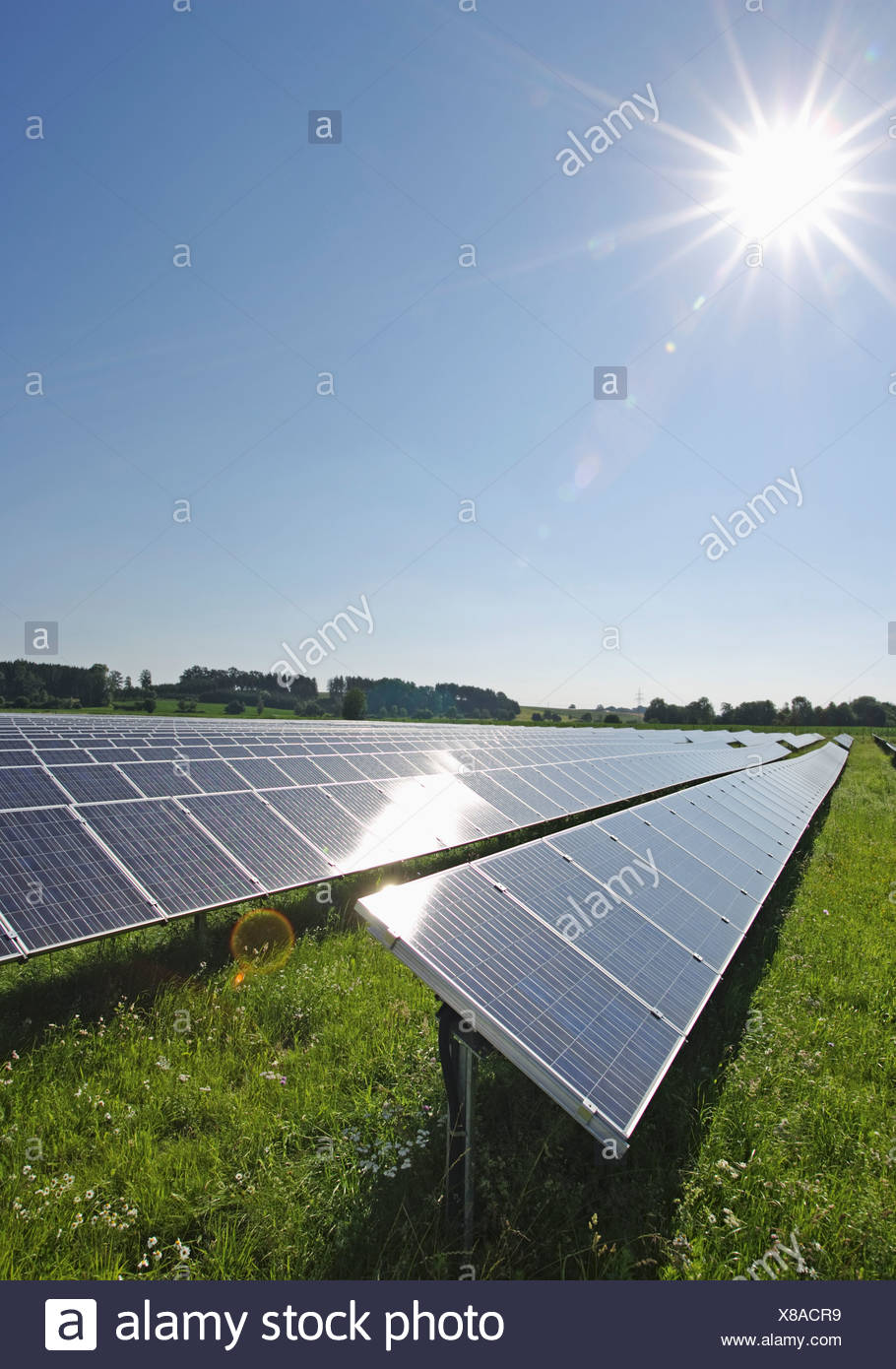 Germany, Bavaria, View of solar panels in field - Stock Image