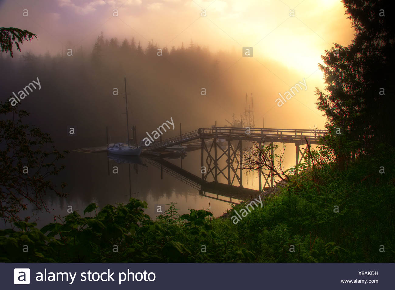 View of boat dock with sunrise through fog near Hollis, Prince of Wales Island, Tongass National Forest, Southceast Alaska, HDR - Stock Image