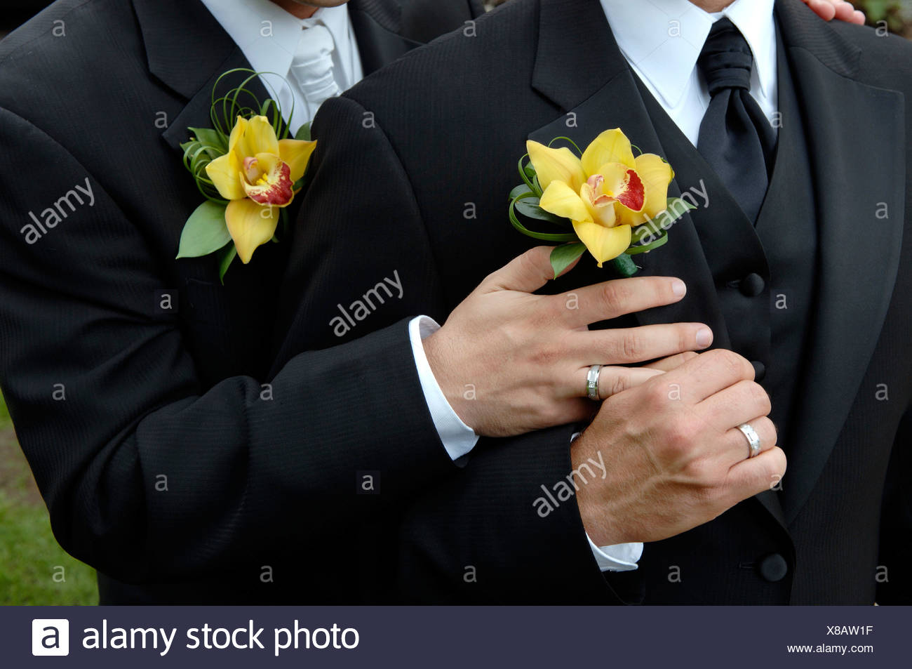 Hands of Gay Couple with Wedding Rings Stock Photo 280522299 Alamy