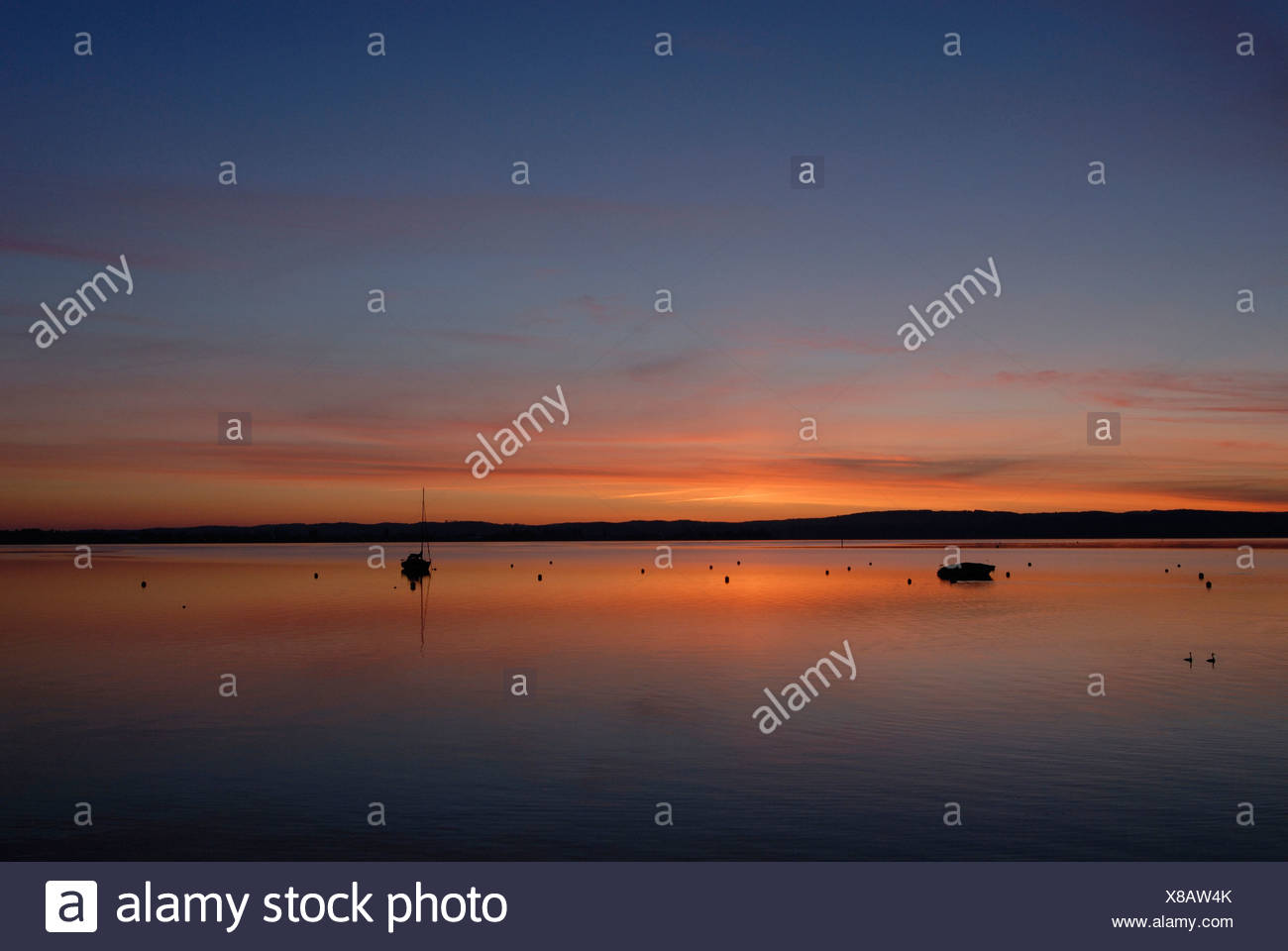 Lake Constance in the Morninglight - Baden Wuerttemberg, Germany, Europe. - Stock Image