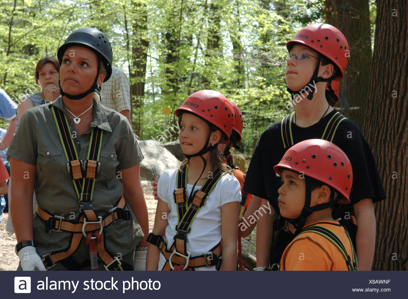 Instruction for climbing, Climbing forest, Neroberg, Wiesbaden, Hesen, Germany - Stock Image