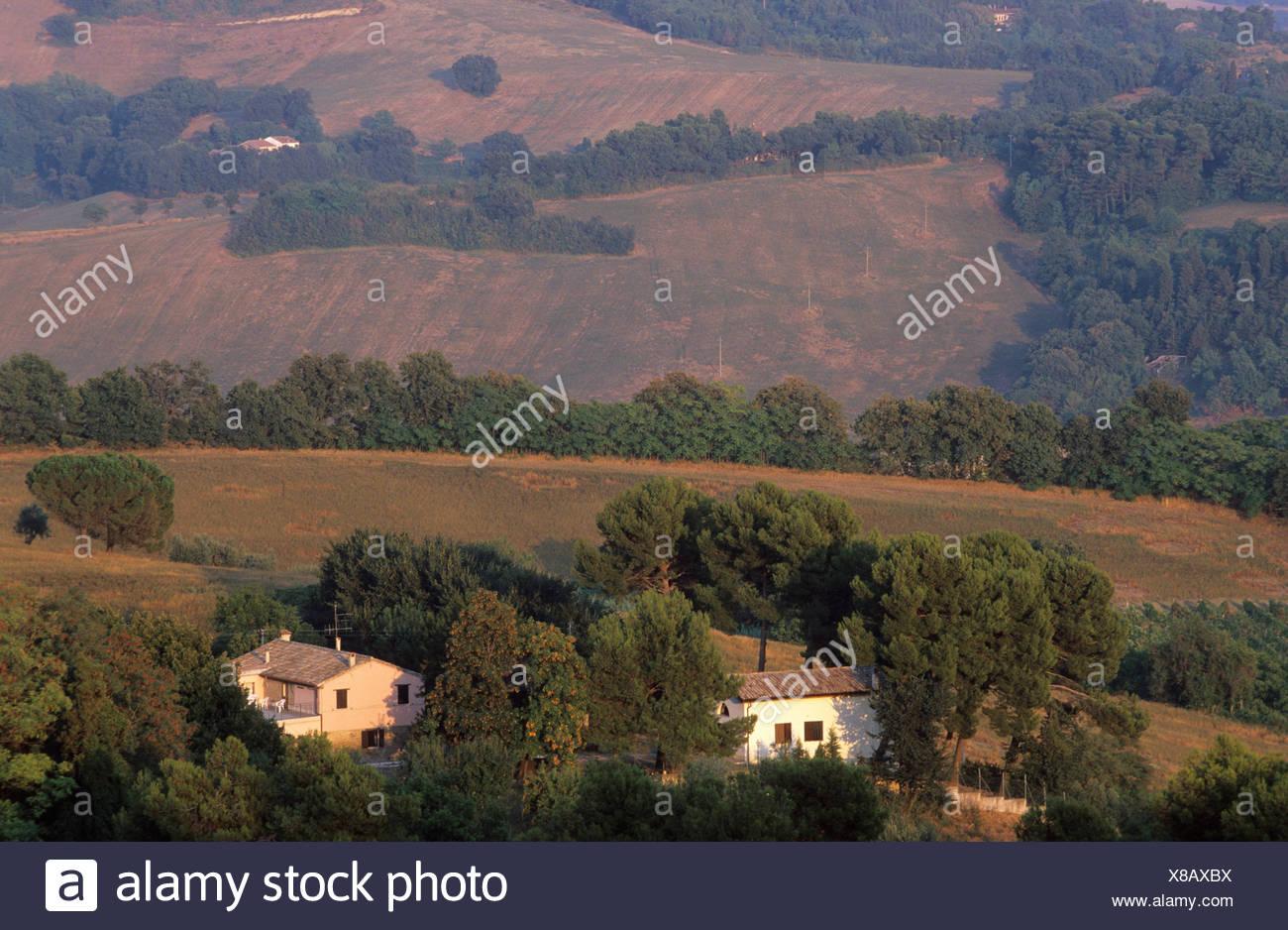 Marche Colle San Bartolo - Stock Image