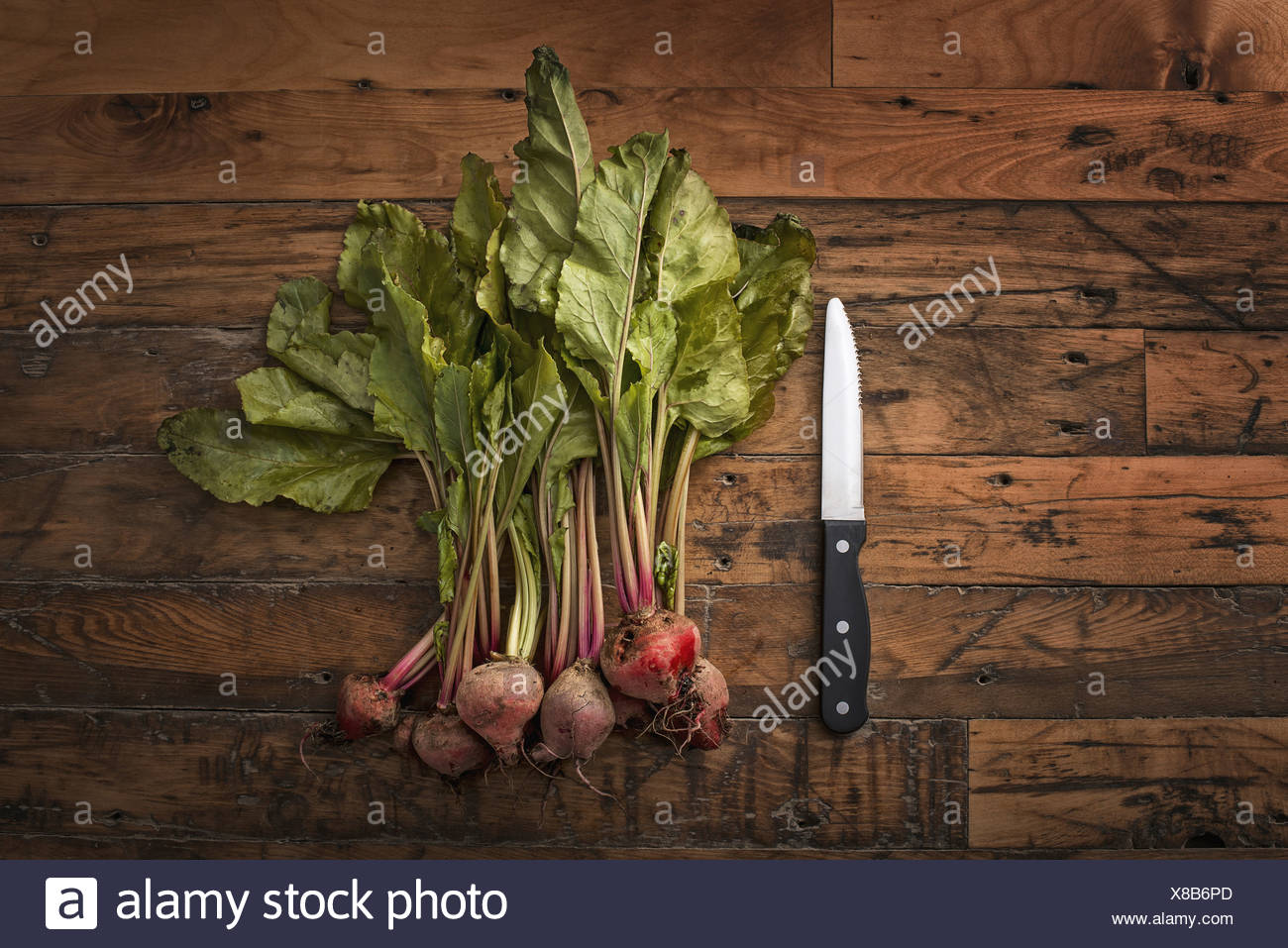 A handful of small beets fresh organic vegetables harvested for the table A vegetable knife - Stock Image