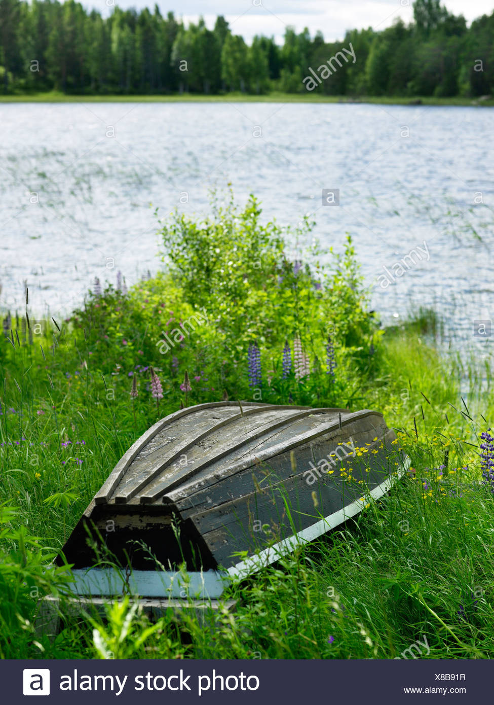 A boat upside down by a lake, Sweden. - Stock Image