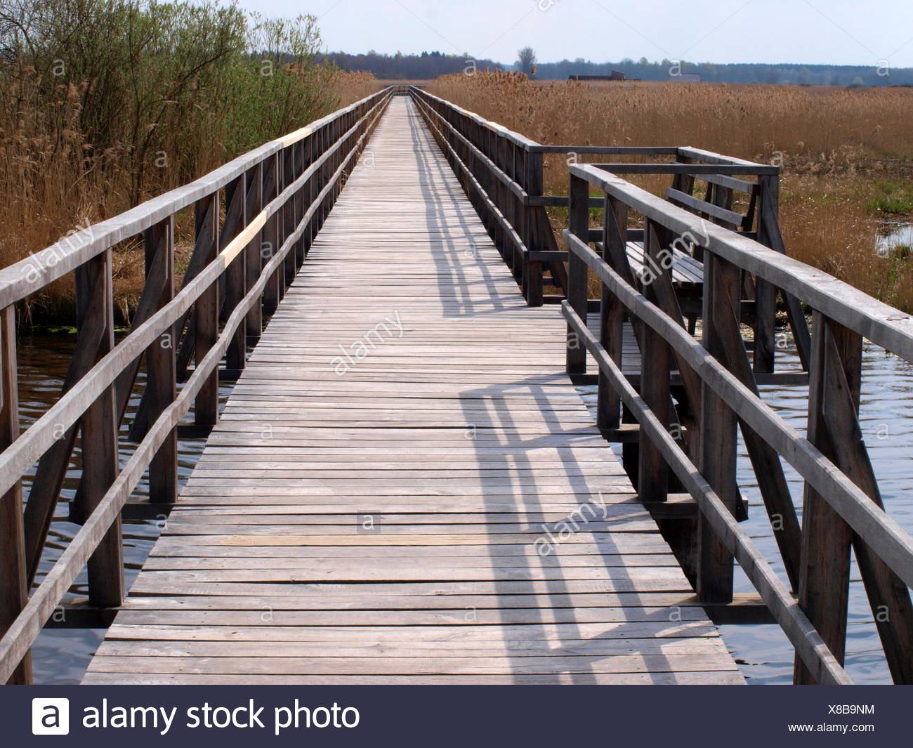 Boardwalk at the Federsee in Germany Stock Photo