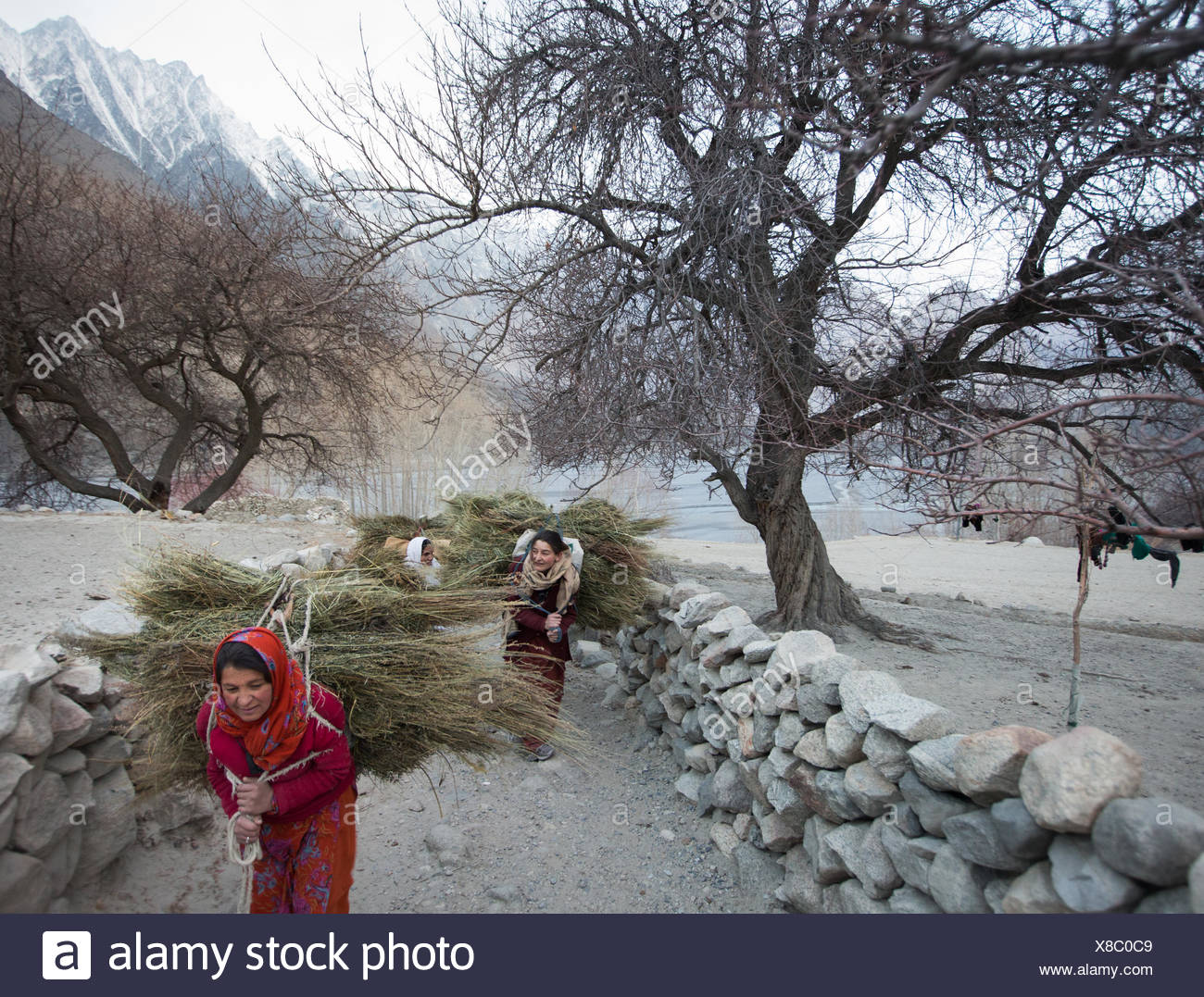 Women returning home after getting wood for cooking and heating and hay to feed their livestock, a two hour walk. - Stock Image