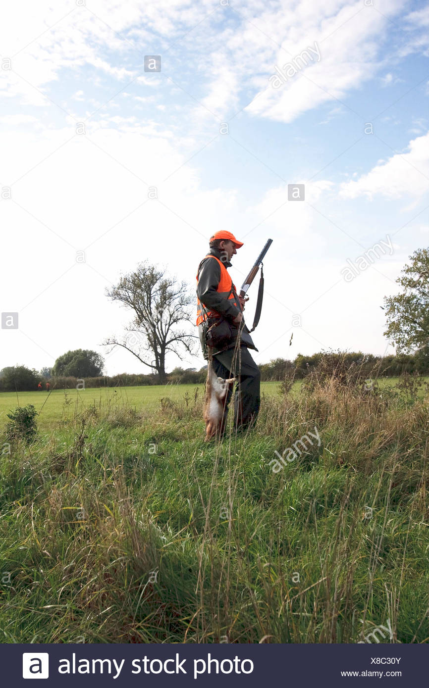hunter at the edge of a meadow with a hare hunted down during a battue, Germany - Stock Image