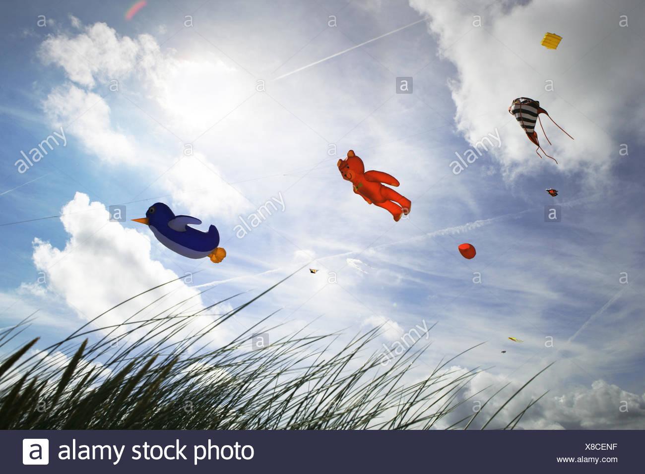 Low angle view of kites flying at kite festival, Fanoe, Denmark - Stock Image