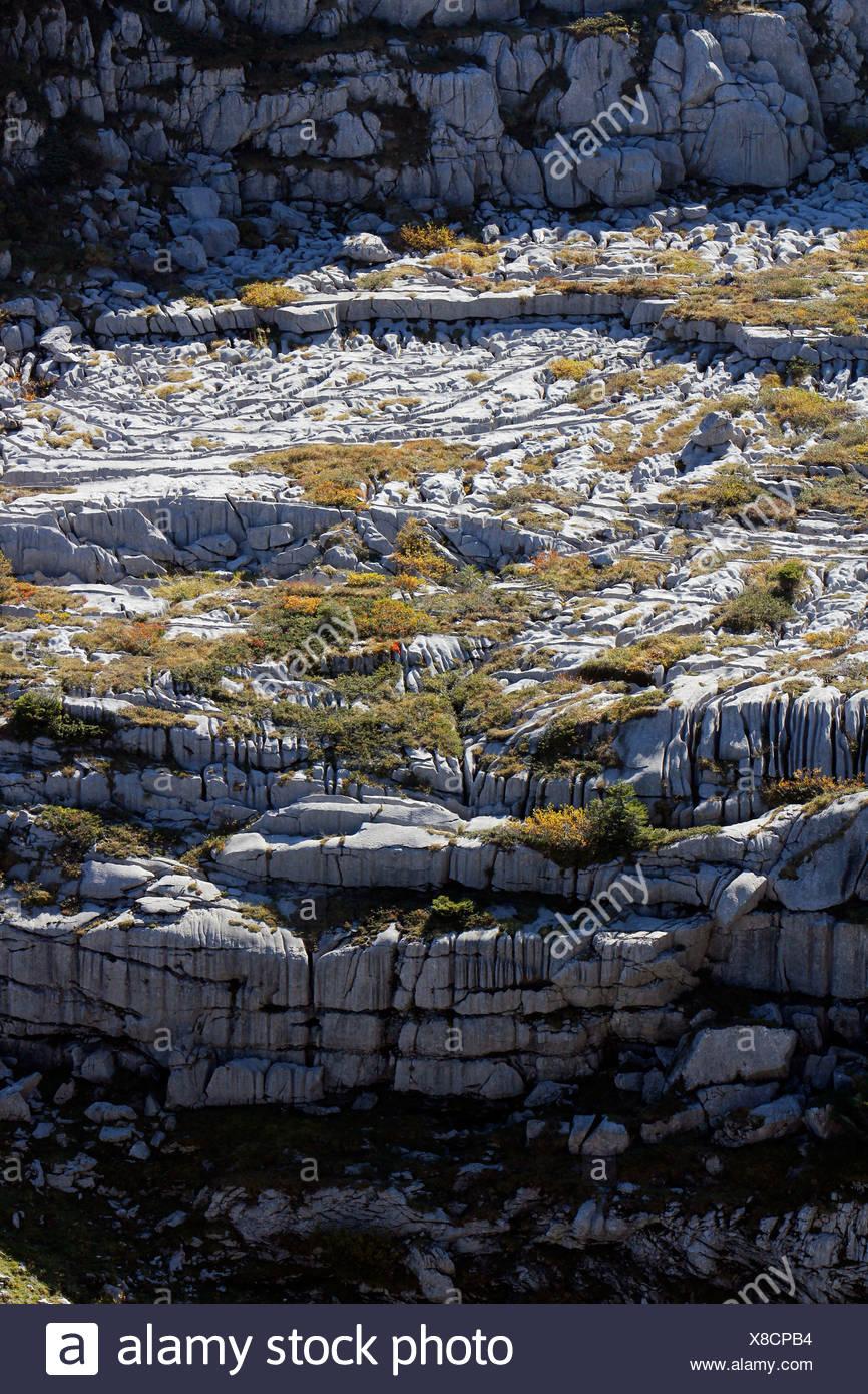 Limestone pavements, karst landforms, geology on Gamser Rugg Mountain, Toggenburg, Canton of St. Gallen, Switzerland, Europe - Stock Image