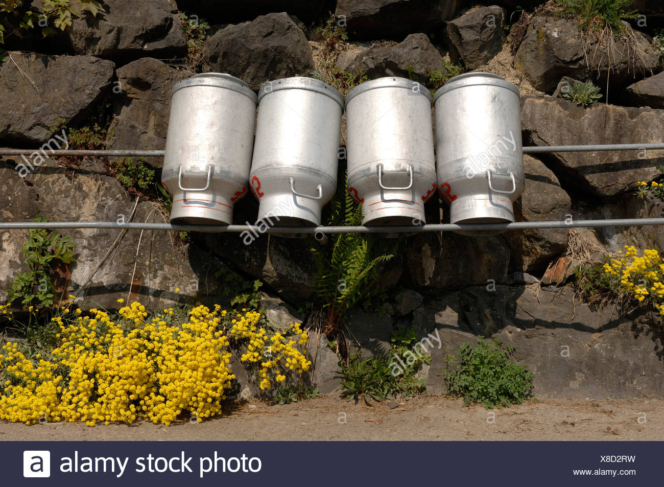 milk chums posed for drying in front of a wall, Switzerland - Stock Image