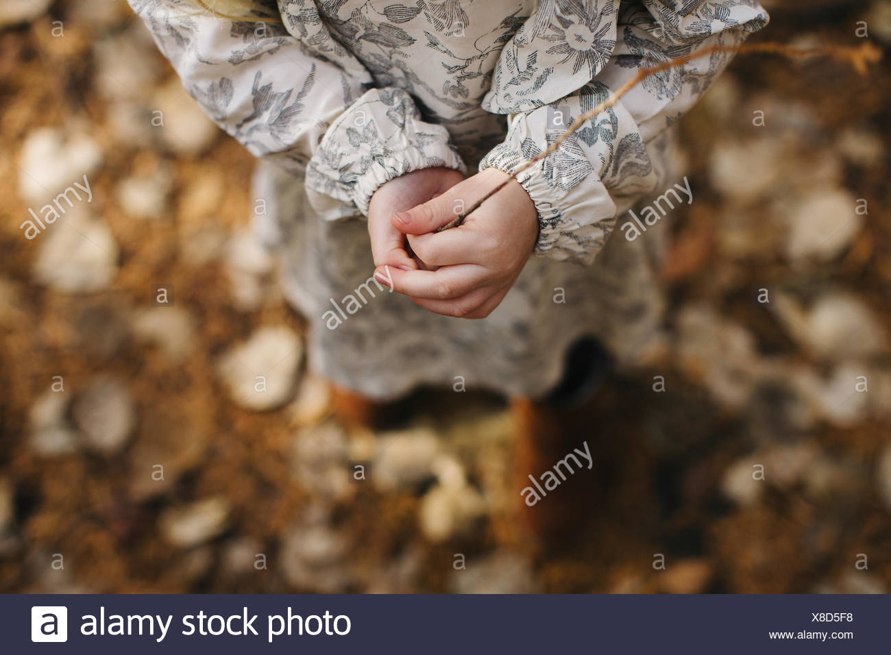 Girl holding twig in forest - Stock Image
