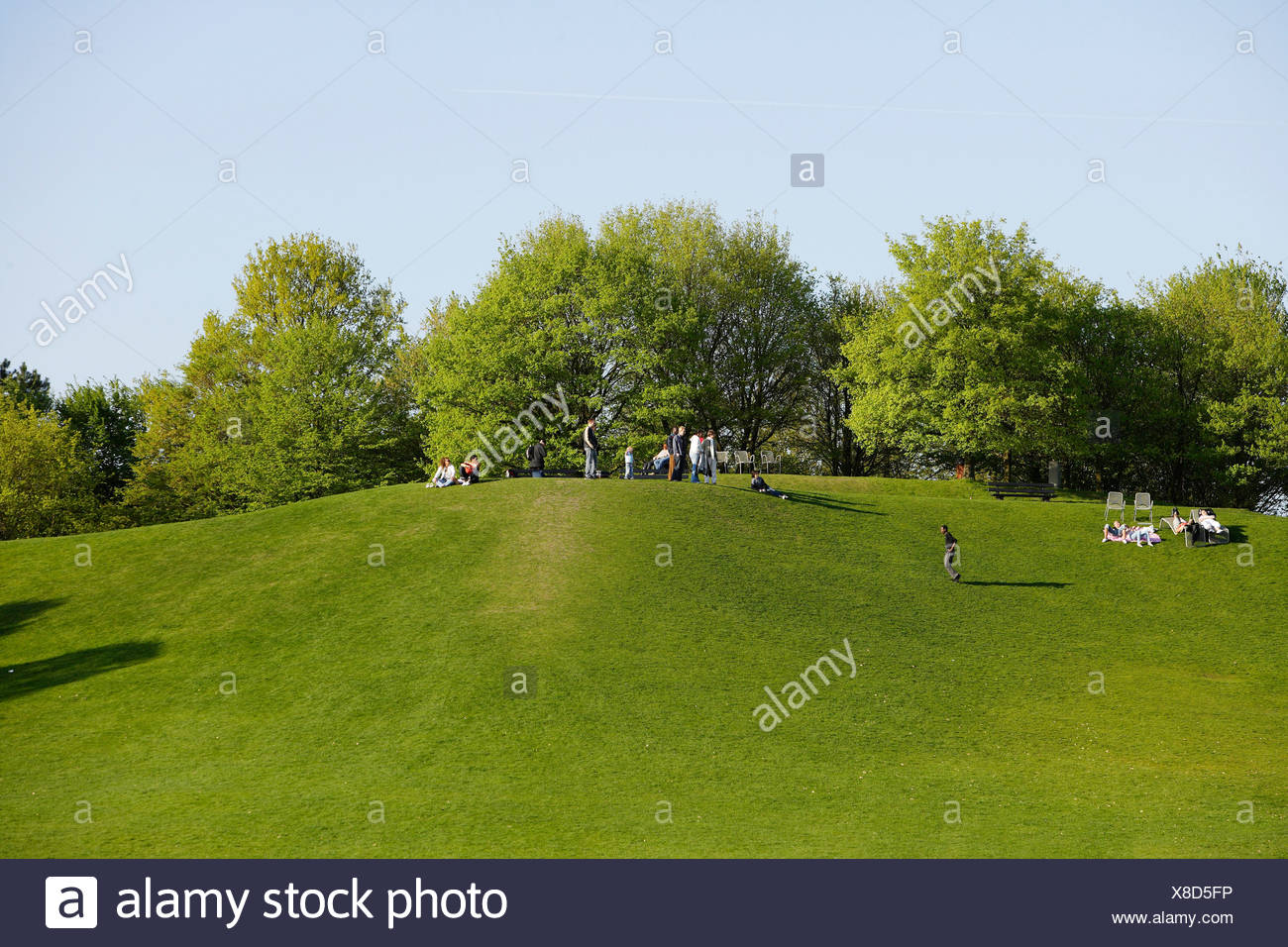 Meadow and hill in the Britzer Garten park in Berlin, Germany, Europe Stock Photo