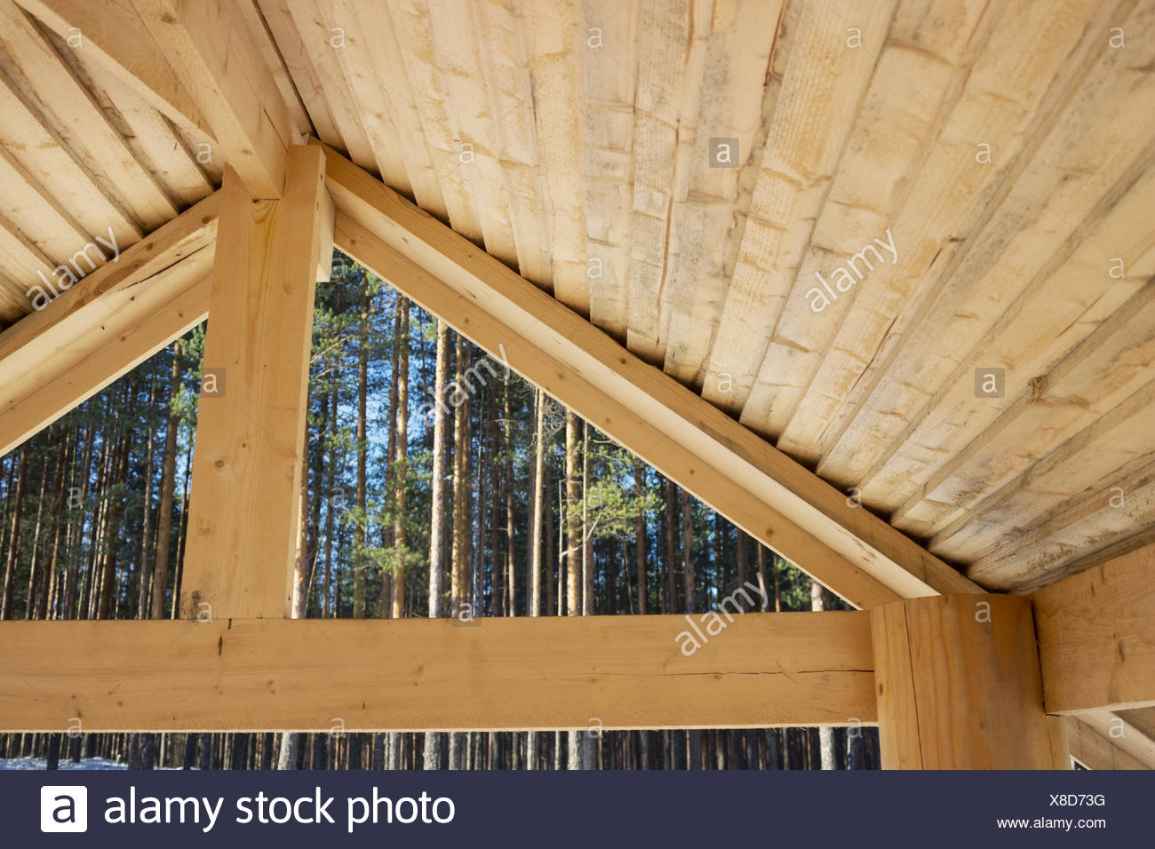 Internal surface of a wooden primitive roof - Stock Image
