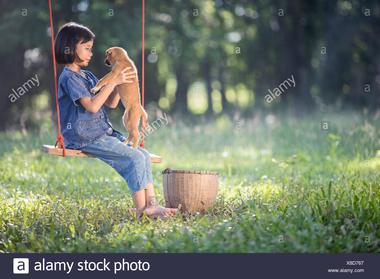 Girl on rope swing with her dog - Stock Image