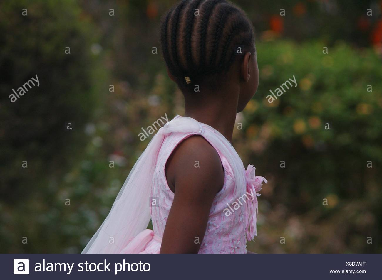 Rear View Of Girl With Braided Hair - Stock Image