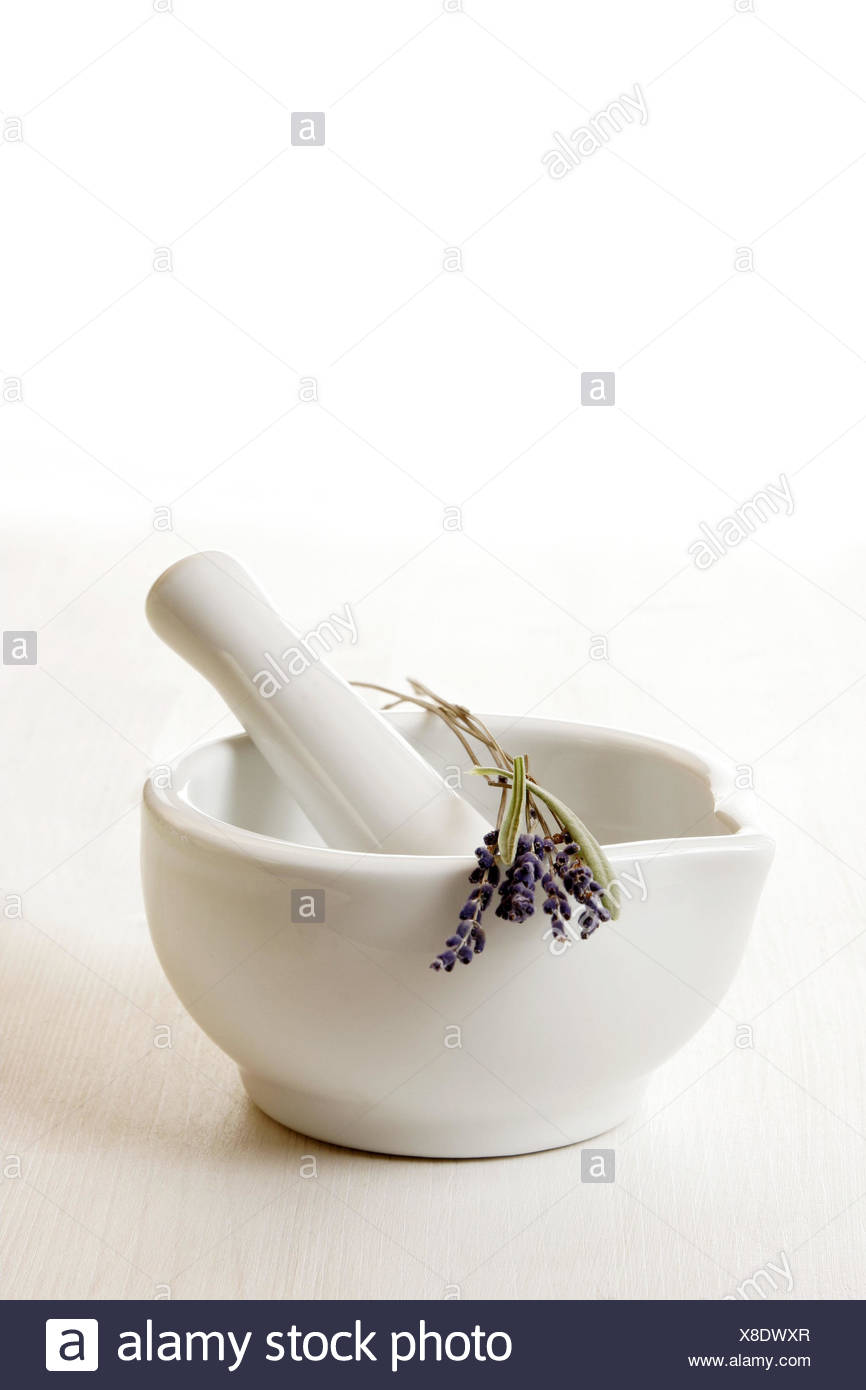 Mortars, tappets, lavenders, Lavandula, officinalis, health, medicine, grind, grind, chop up, pestle, cures, alternatively, medicine, vegetable, reassuringly, conception, phyto therapy, nature medicine, nature medicine, herbal medicine, blossoms, lavender blossoms, plant cuts, medicinal plants, herbs, drugs, useful plants, aroma, flowers, plants, white, white-blue-violet, studio, cut out, Still life, - Stock Image