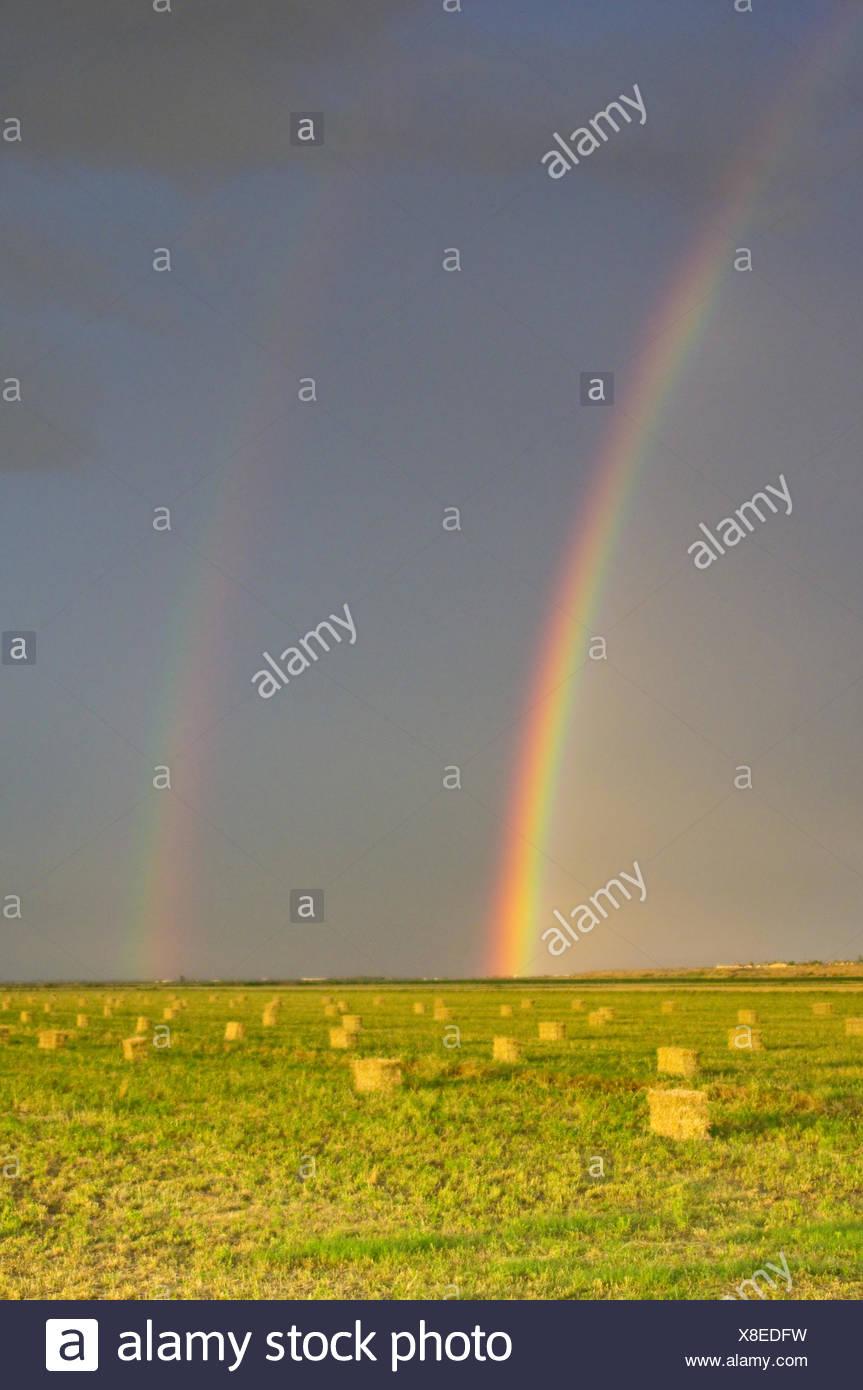 Rainbows Above Hayfield - Stock Image