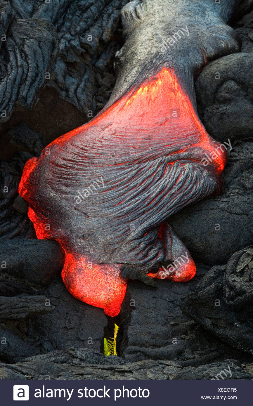 Viscous Pāhoehoe lava flowing from rifts in the East Rift Zone towards the sea, lava field at the Kilauea shield volcano - Stock Image