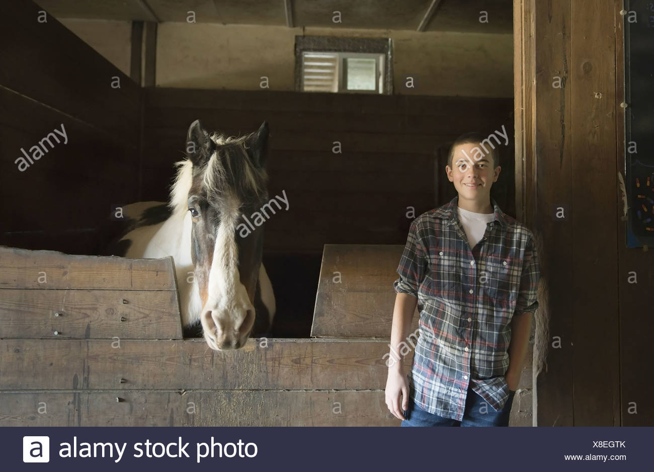 A man standing by horsebox in the stables at an animal sanctuary A horse with its head over the gate Saugerties New York USA - Stock Image