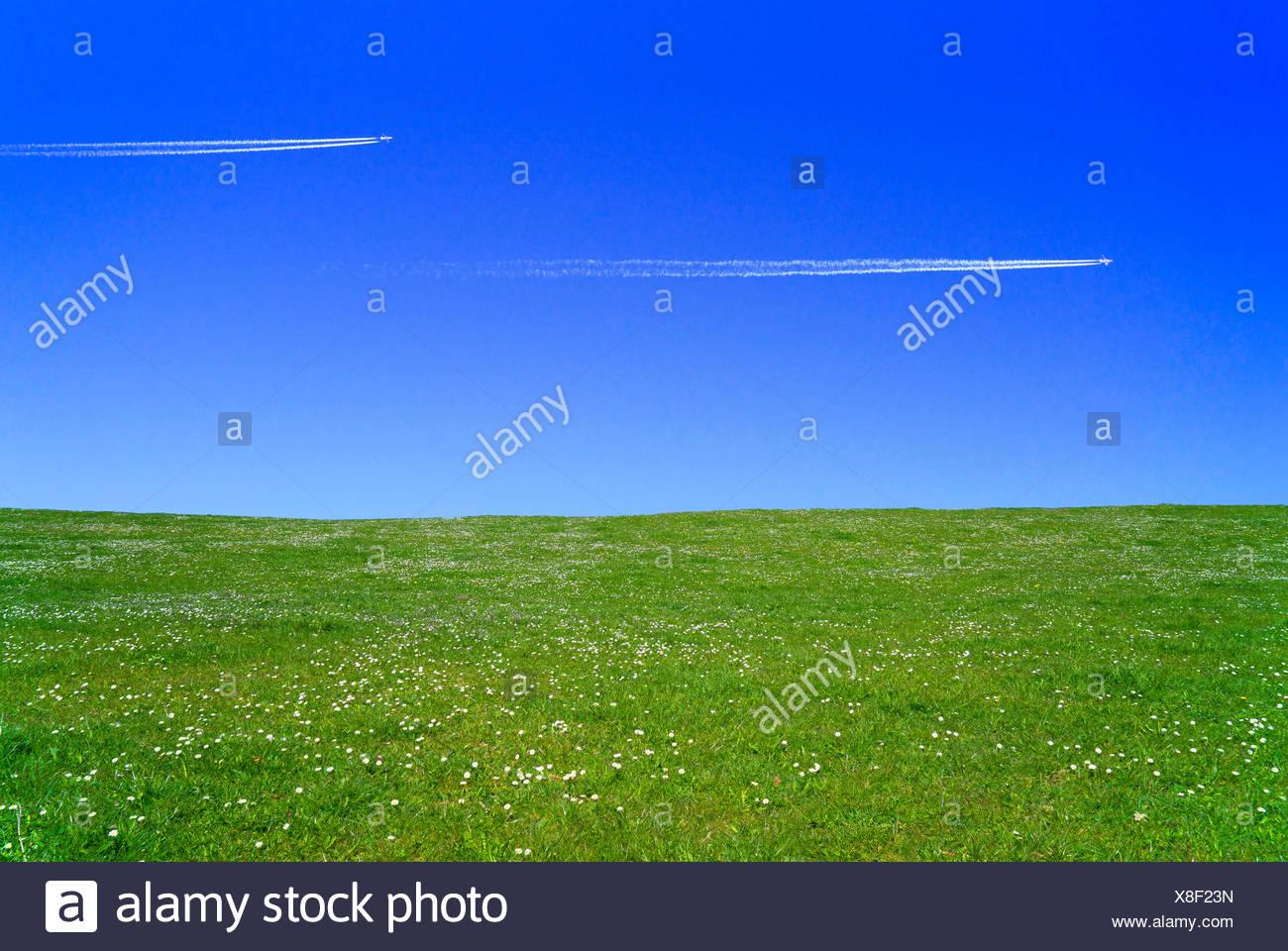 green meadow and blue sky, Germany, Bavaria, Oberbayern, Upper Bavaria - Stock Image