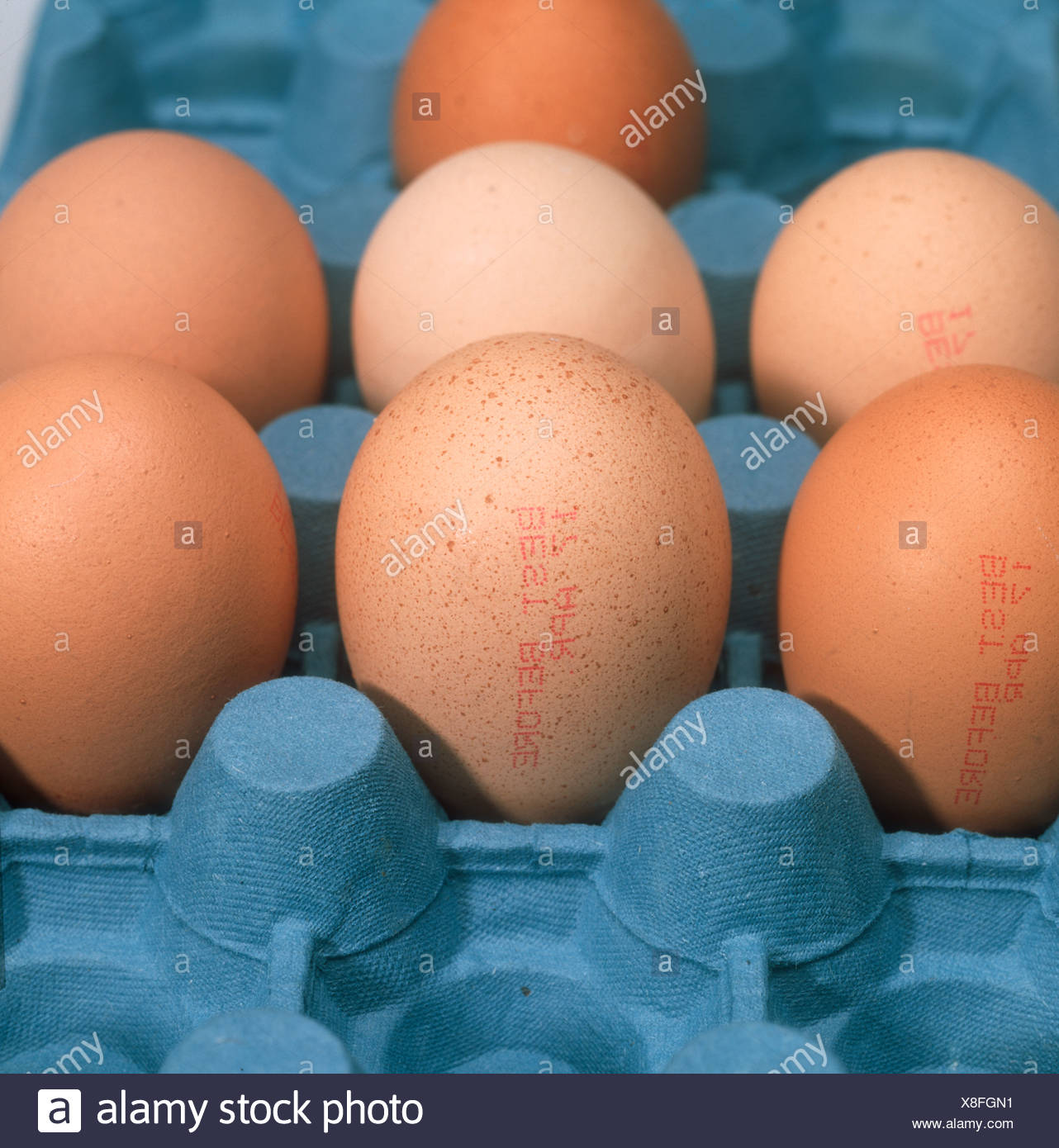 from Ibrahim dating eggs