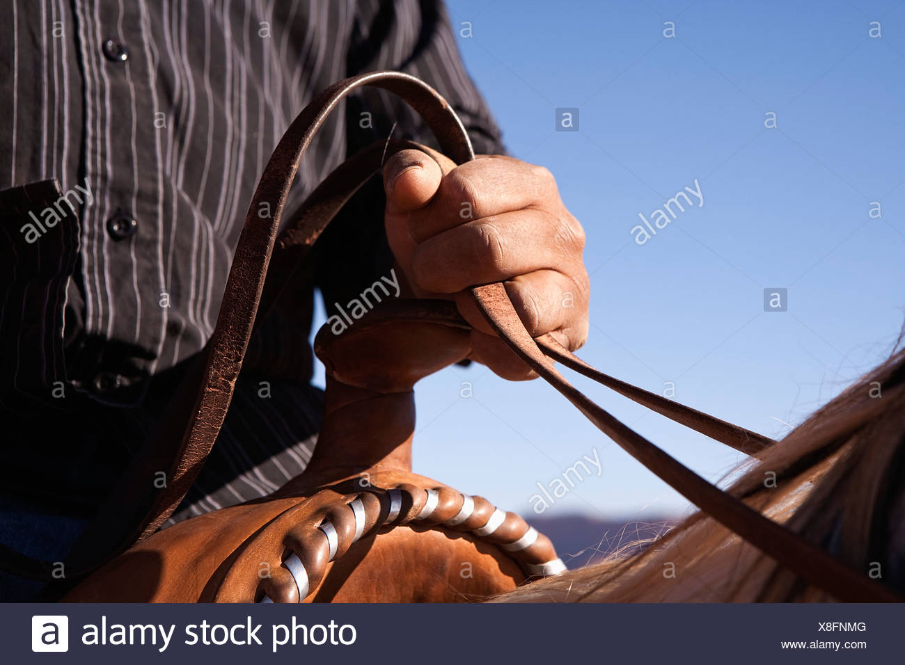 Man holding the reins of horse, close-up, focus on hand - Stock Image