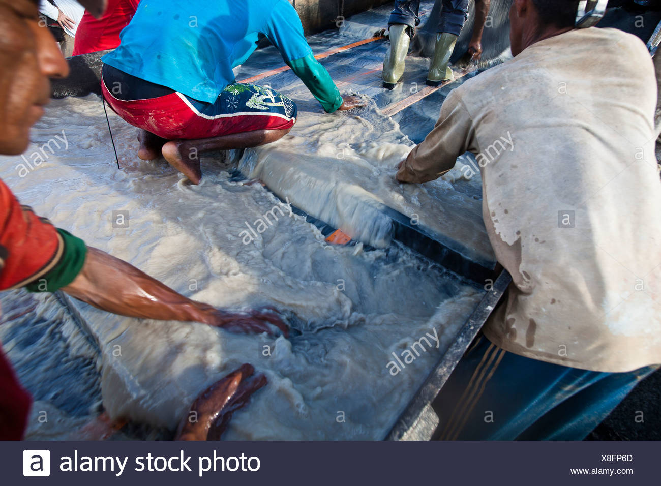 Amazon gold mining despescagem  removal of material collected in the sluice box by using mercury to amalgamate with the metal - Stock Image