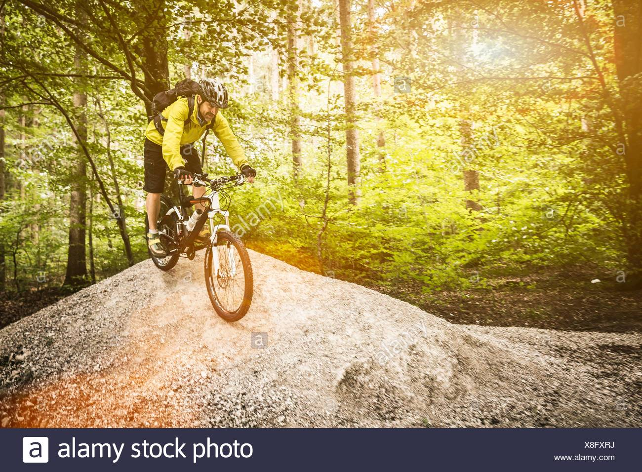 Mature male mountain biker cycling over mound in forest - Stock Image