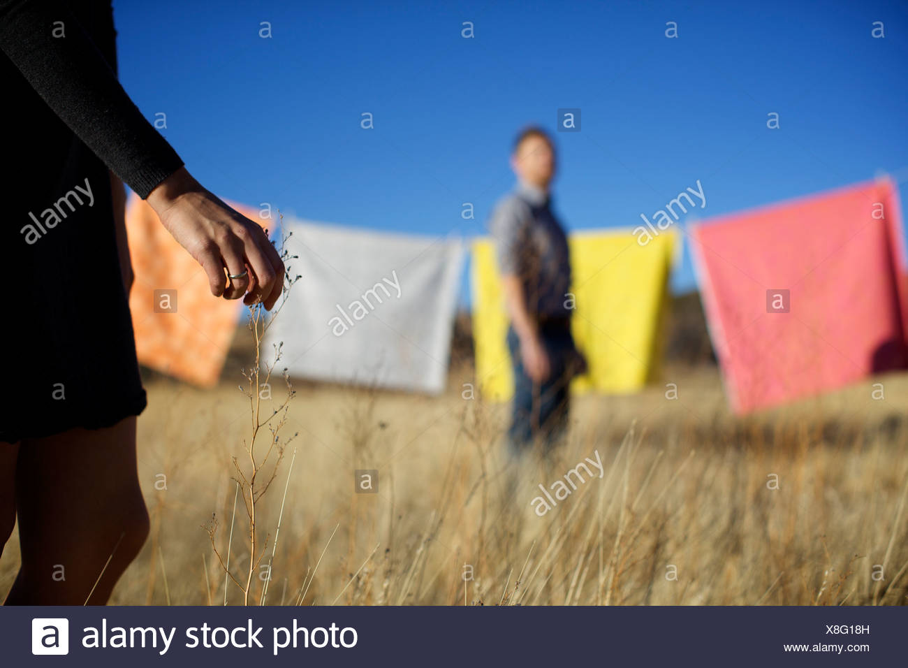 Female touches a blade of dry grass while a male watches her. - Stock Image