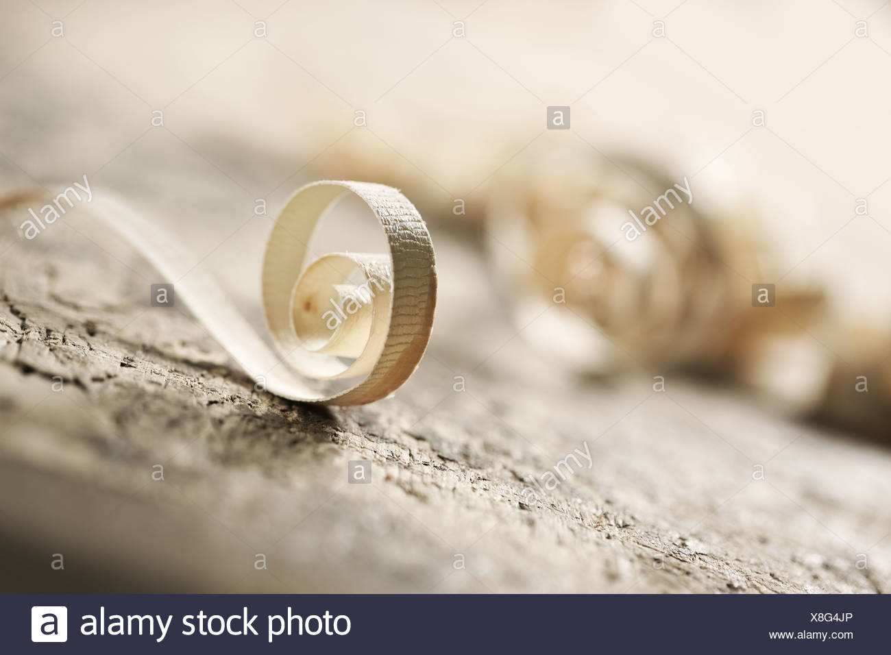 wood shavings with shallow depth of field - Stock Image