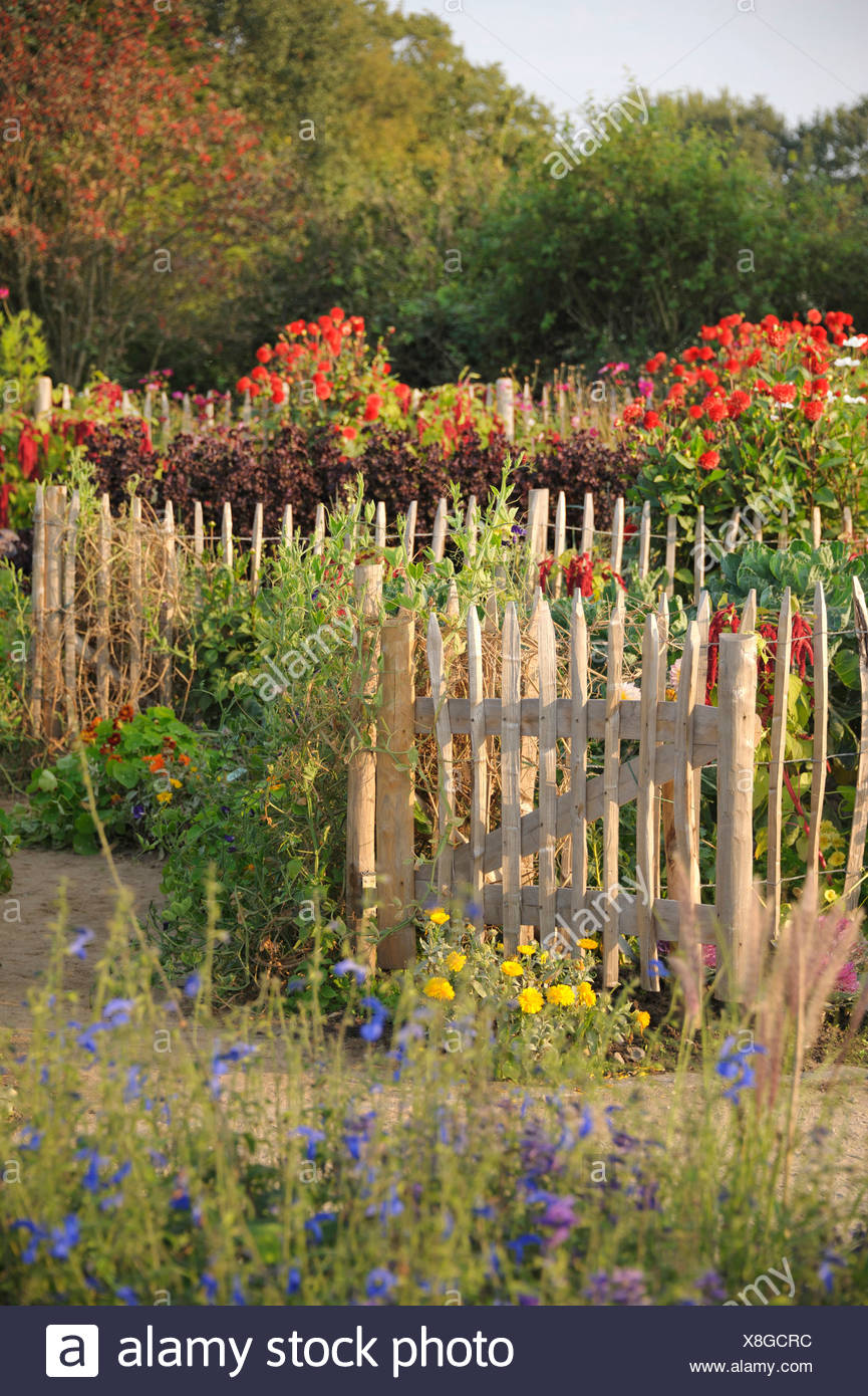 garden gate of a rural garden, Germany - Stock Image