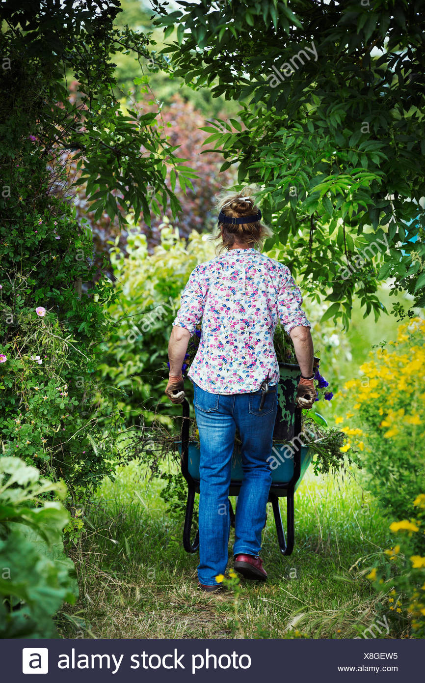 A woman pushing a wheelbarrow of garden clippings along a path. - Stock Image