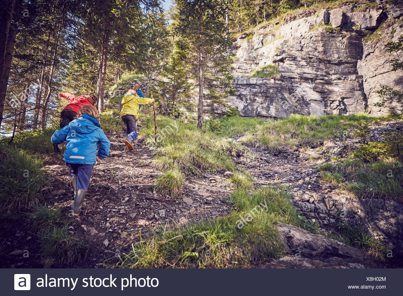 Group of children in forest, walking uphill, rear view - Stock Image