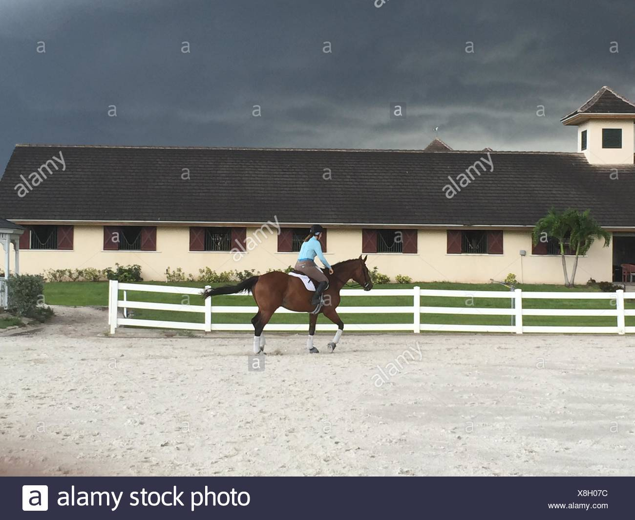 Riding horse in a storm - Stock Image