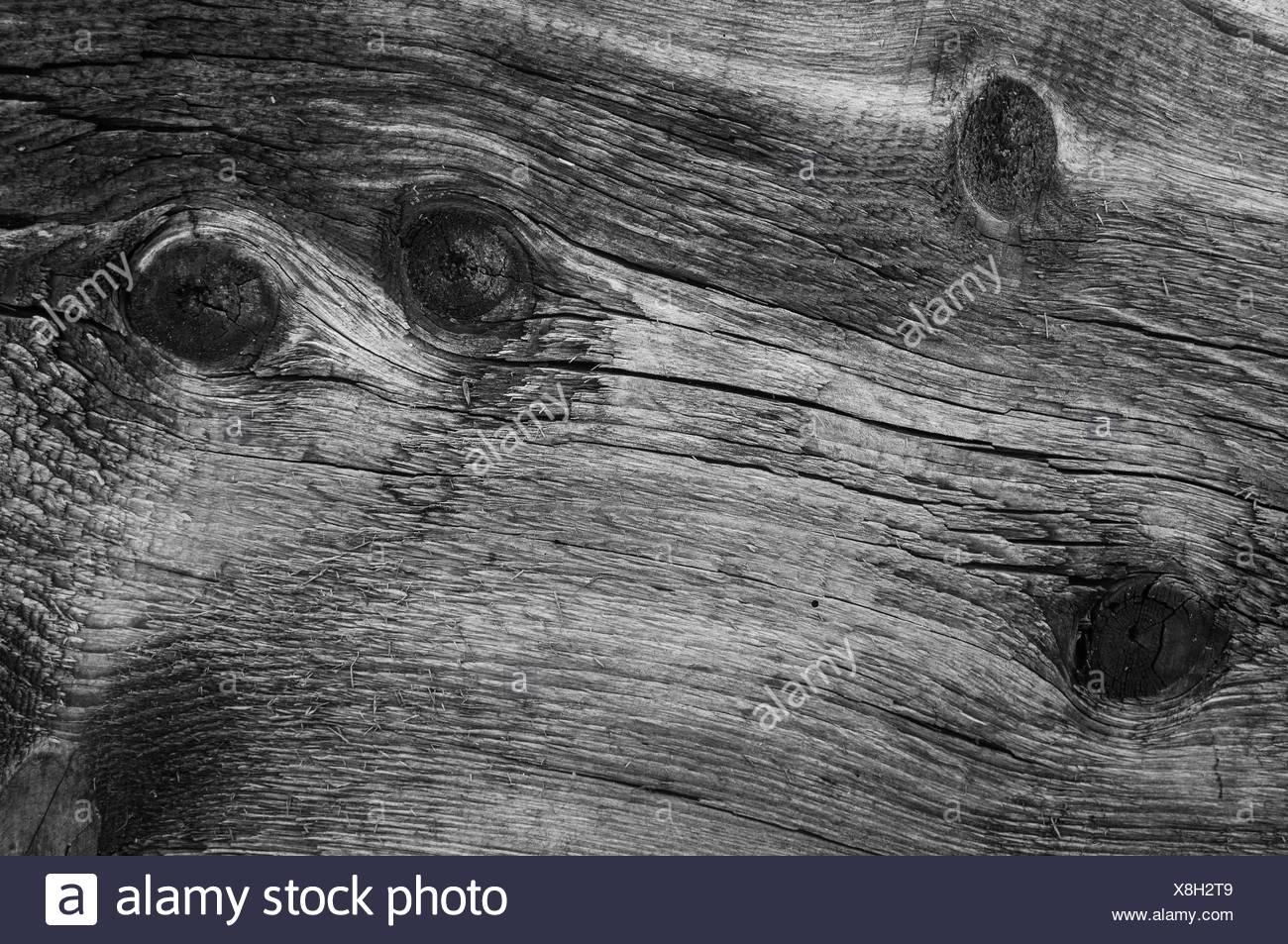 Old wood texture, vintage natural background - Stock Image