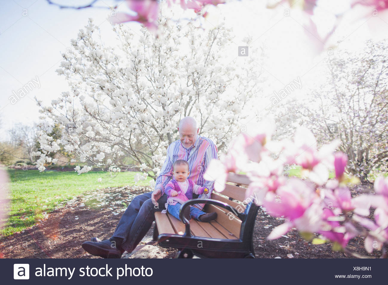 Grandfather and grandchild on park bench - Stock Image