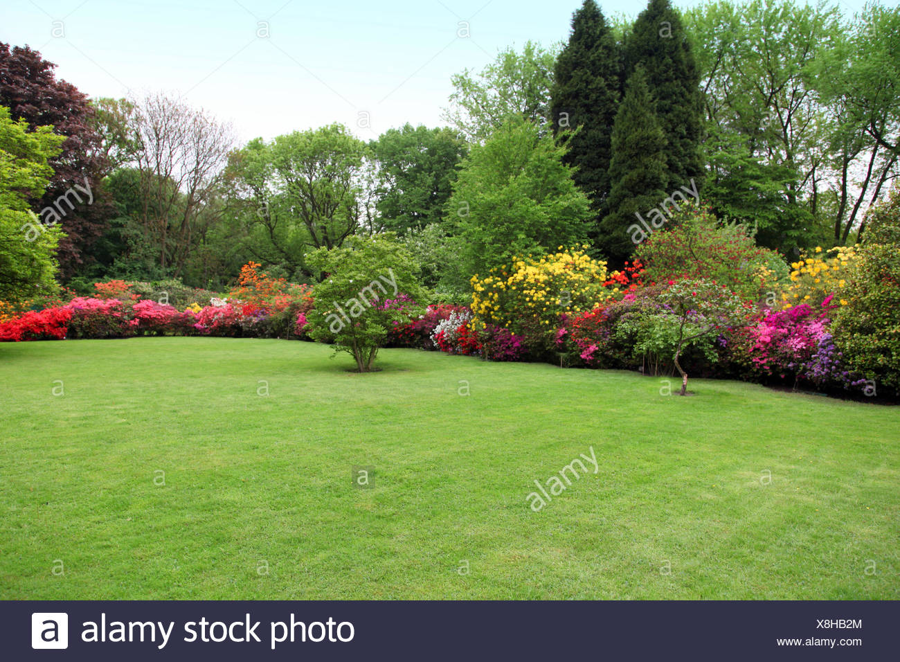 Beautiful manicured lawn in a summer garden - Stock Image
