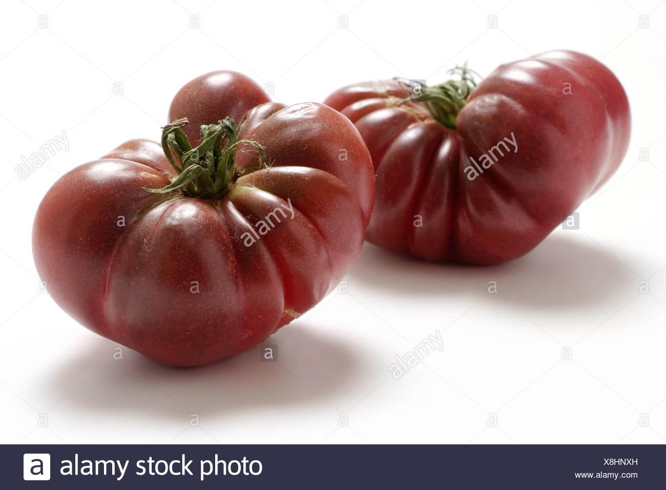 Tomato varieties:  Purple Callabash - Stock Image