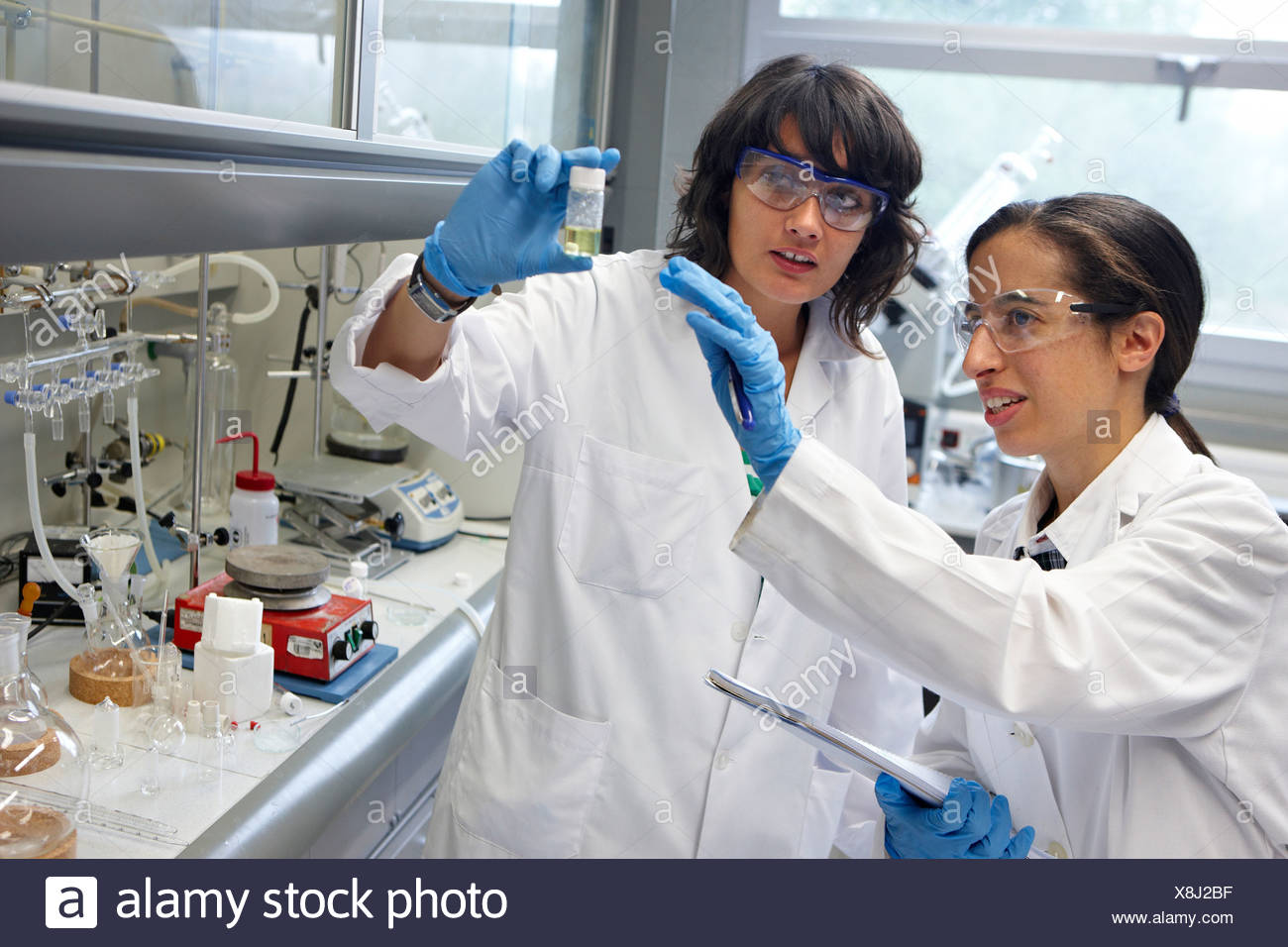 Polymer Laboratory, Materials Physics Center is a joint center of the Spanish Scientific Research Council CSIC and the - Stock Image