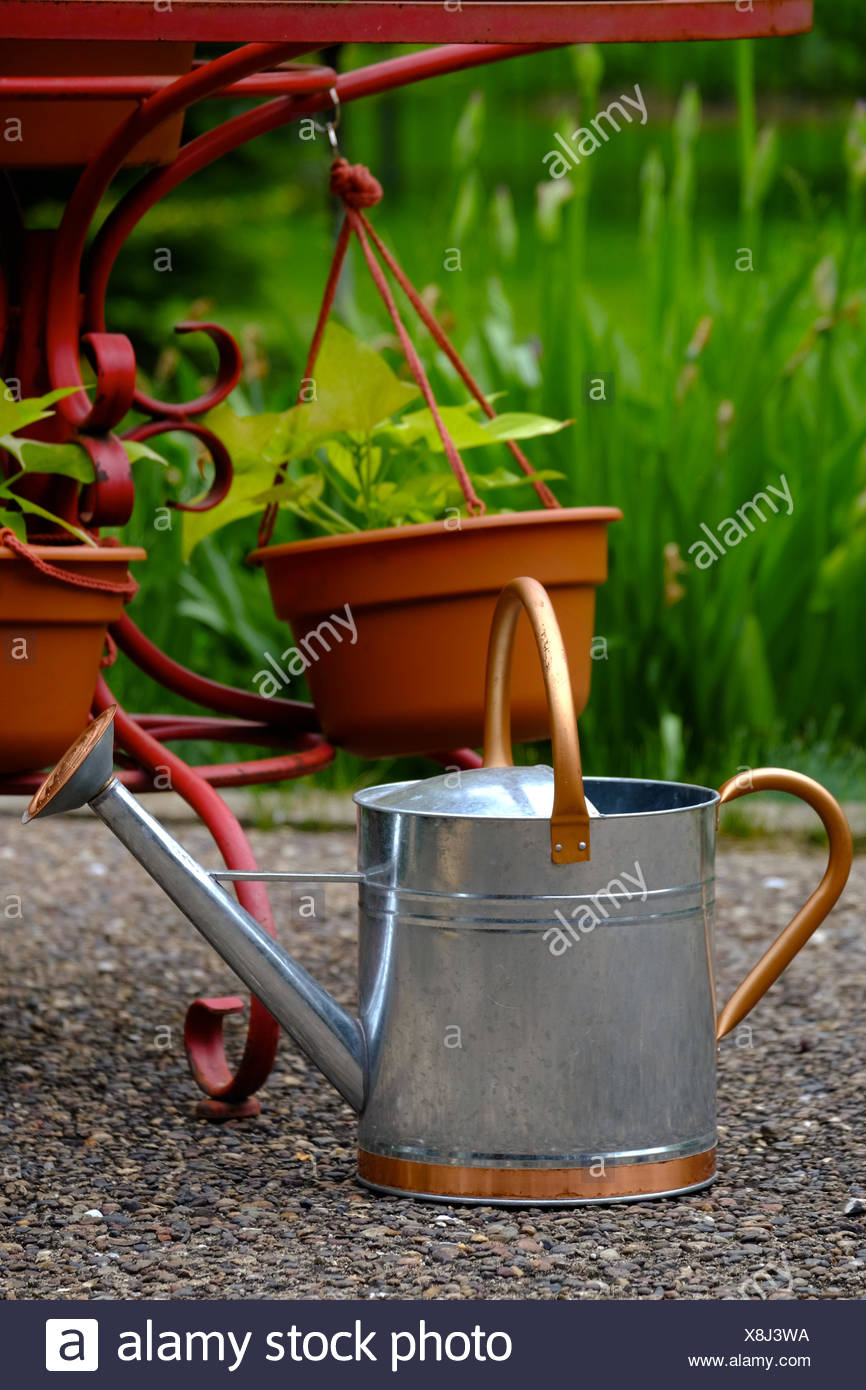 A galvanized steel and copper watering can is next to potted plants and a garden. - Stock Image